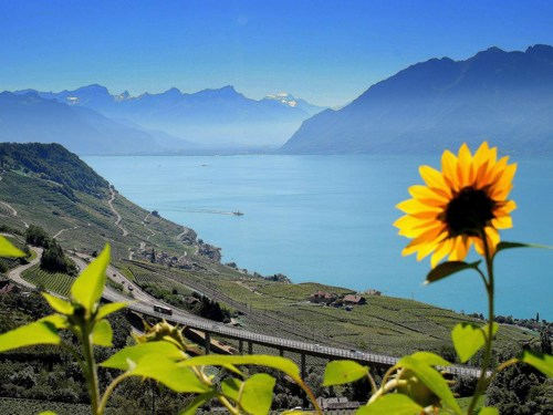 Lake-Geneva image source - weareholidays.co.in